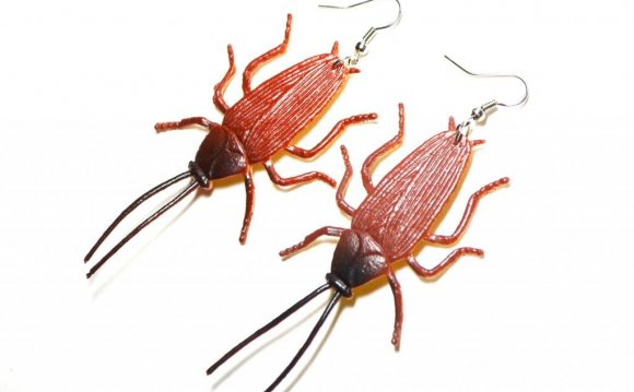 Cockroach Earrings Gross