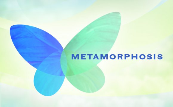 The Metamorphosis Online